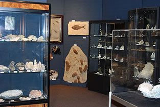 High-class mineral room with fossils